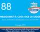 88 – INELEGGIBILITA': COSA DICE LA LEGGE