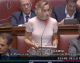 """Bergamini: Immigrati, """"Renzi faccia scontare pena Paesi origine"""""""