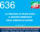 636 – TRANI E AGENZIE DI RATING