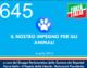 645 – IL NOSTRO IMPEGNO PER GLI ANIMALI