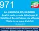 971 – LA MANOVRA DEL RAGGIRO