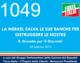 1049 – LA MERKEL SALVA LE SUE BANCHE PER DISTRUGGERE LE NOSTRE (R. Brunetta per 'Il Giornale')