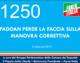1250 – PADOAN PERDE LA FACCIA SULLA MANOVRA CORRETTIVA