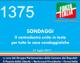 1375 – Sondaggi, il centrodestra unito in testa per tutte le case sondaggistiche